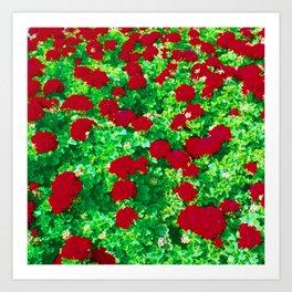 Geraniumz Art Print