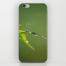 Acer iPhone Skin