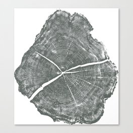 Locust Tree ring image, woodcut print Canvas Print