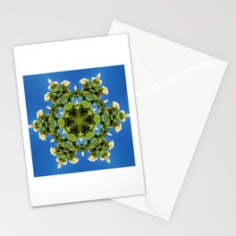 Hydrangea kaleidoscope - white flowers, green leaves, blue sky 161134 k6 Stationery Cards