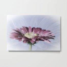 Soft And Dreamy Metal Print