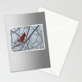Redbird on Icy Tree Branch Stationery Cards