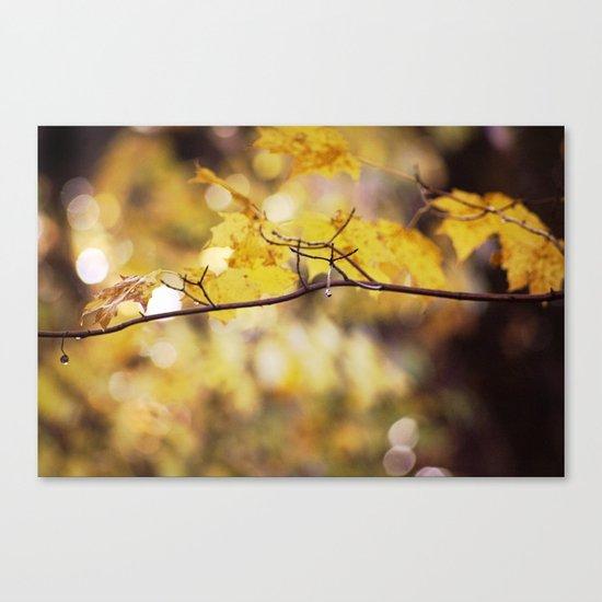 Amber Droplets Canvas Print