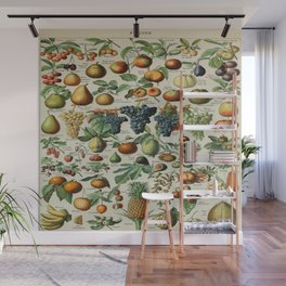 Fruits Vintage Scientific Illustration French Language Encyclopedia Lithographs Educational Wall Mural