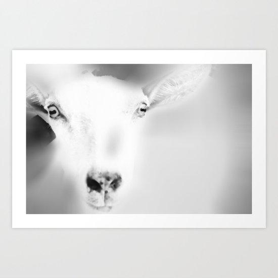 Got your Goat Art Print