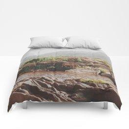 Grazing Comforters