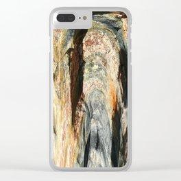 Granite Clear iPhone Case