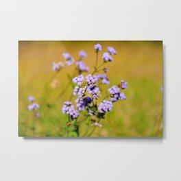 """Violette"" by ICA PAVON Metal Print"