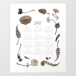 Woodland Wonders Calendar Art Print