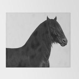 Black beauty Friesian stallion Throw Blanket