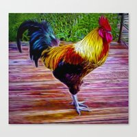 rooster Canvas Prints featuring Rooster by Phil Flaig