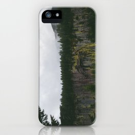 Landscape, Gifford-Pinchot national forest Washington iPhone Case