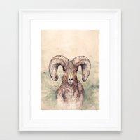 ram Framed Art Prints featuring Ram by Joy Paton