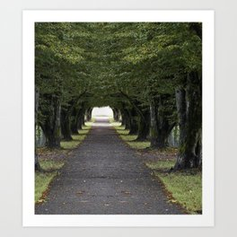 Tree arbor Art Print