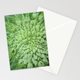 Carrot Top Stationery Cards
