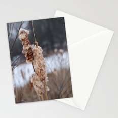 Cattail Stationery Cards