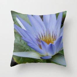 blue flower in saints garden Throw Pillow