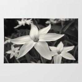 Star Flower Rug