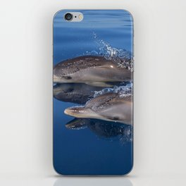 Beautiful Spotted dolphins Stenella frontalis iPhone Skin