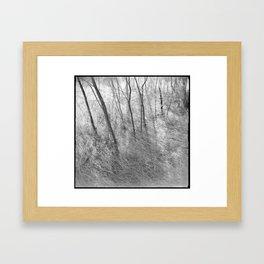 #90 Framed Art Print