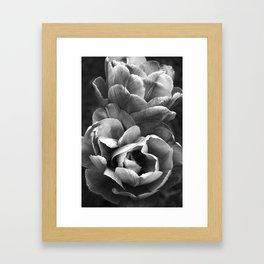 Summer Sights Framed Art Print