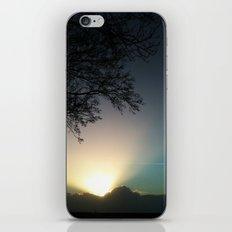 Spoton iPhone & iPod Skin
