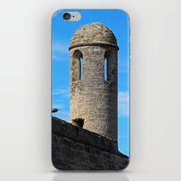Chronicle Concealed iPhone Skin