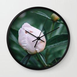 Delicate white peony bud Wall Clock