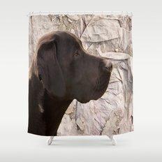 black Labrador Shower Curtain