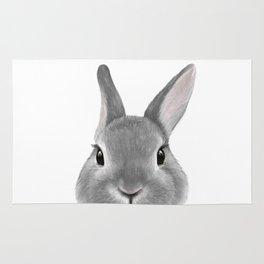 Netherland Dwarf rabbit Grey, illustration original painting print Rug
