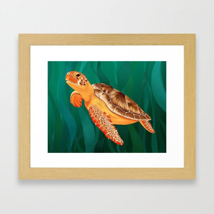 Katma the Green Sea Turtle Framed Art Print