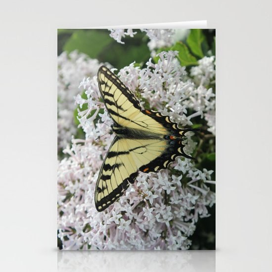 Butterfly Delight Stationery Cards