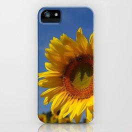 Sunny Summer Sunflower iPhone Case