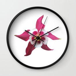 Single pink columbine flower bloom Wall Clock