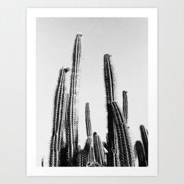Cacti, Catus, Desert, Scandinavian, Modern art, Art, Minimal, Wall art Print Art Print