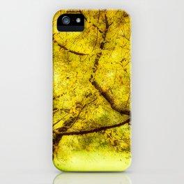 Arboretum Trees iPhone Case