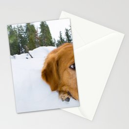 Golden in the Snow Stationery Cards