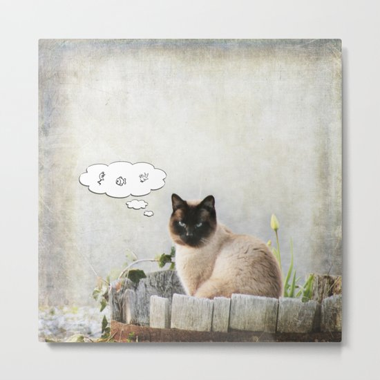 Kitty Thoughts Metal Print