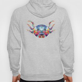 Ajolote Color Geometric Hoody