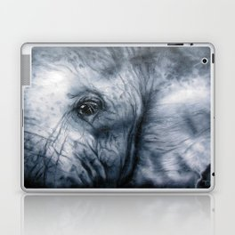 Elephant Eye Laptop & iPad Skin