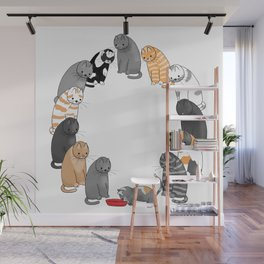 A Cat's Patience Wall Mural