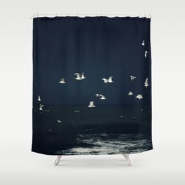 sea - evening flight Shower Curtain