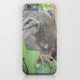 Good Night Sleepy Koala iPhone Case