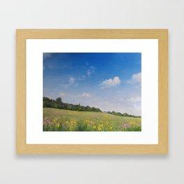 Summer fields2 Framed Art Print