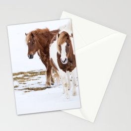 horse by Michal Vrba Stationery Cards