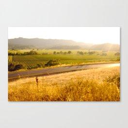 070826.005 Canvas Print