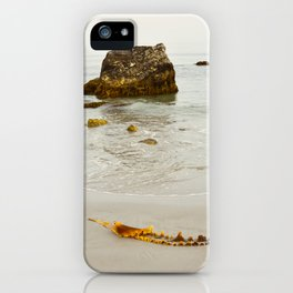 Summer Beach Seaweed iPhone Case
