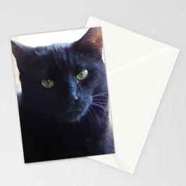 Cranky cat Stationery Cards