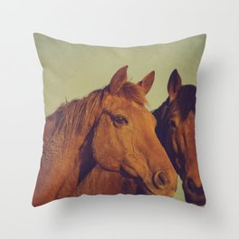 Here we go two by two Throw Pillow
