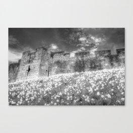 York City Walls Canvas Print